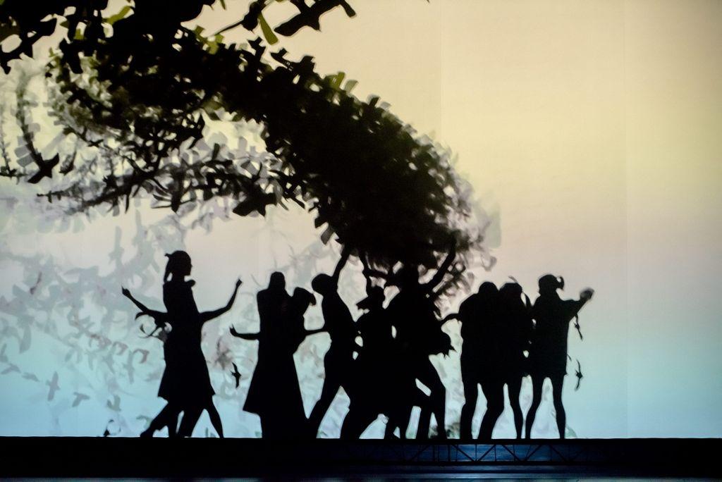 Białe tło, na nim widoczna jest na środku – jak w teatrze cieni – grupa osób kierujących się w prawą stronę. Tuż nad nimi unosi się gruba smuga, utworzona z lecących ptaków.