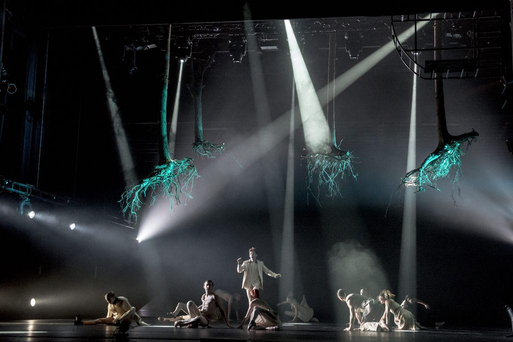 Ciemna scena rozświetlona wieloma wiązkami światła. Reflektory oświetlają tancerki i tancerzy siedzących na podłodze, jeden z mężczyzn stoi. Nad całą grupą wiszą cztery drzewa, jakby wyciągnięte z ziemi, korzeniami skierowane w dół.